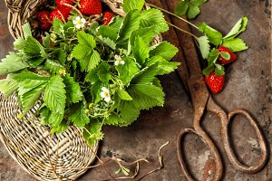 Strawberries, flowers and leaves