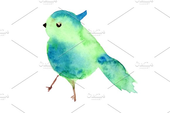 Watercolor Blob In Bird Shape