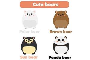 Cute bears. Panda, brown, polar, sun
