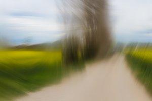 Elastic landscape 2