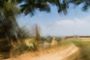 Elastic landscape 3