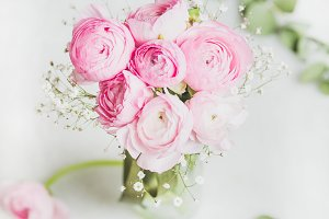 Light pink ranunkulus flowers in vase on white background