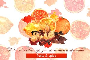 Watercolor citrus&spice