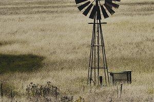 Windmill on Grassland