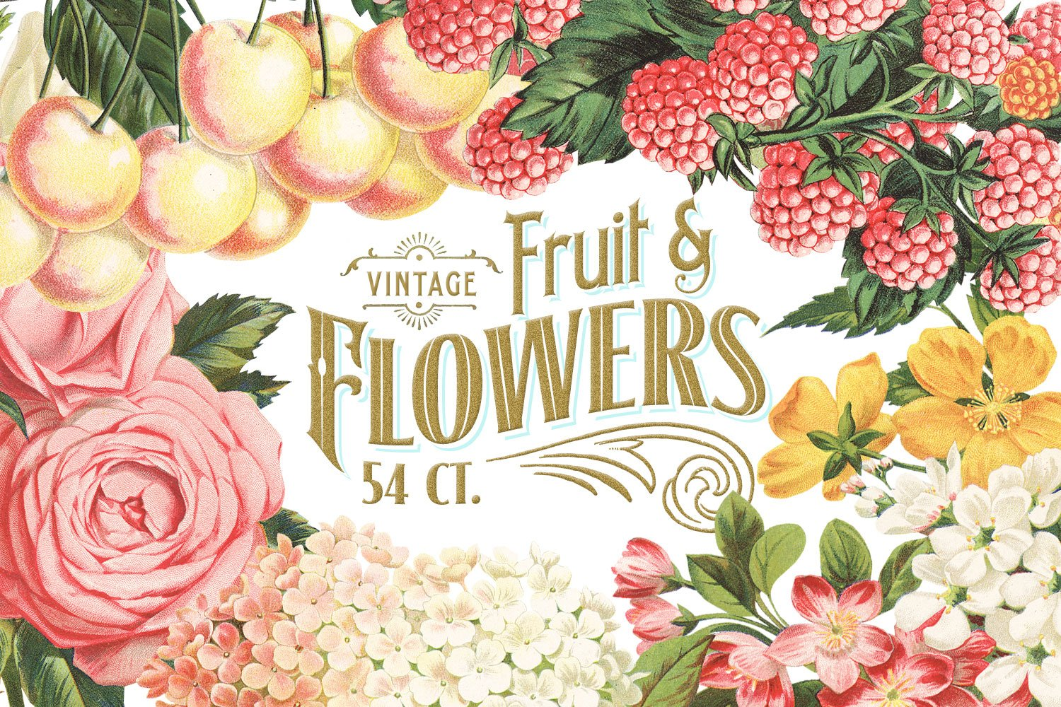 Massive Vintage Fruit And Flowers Graphic Objects Creative Market