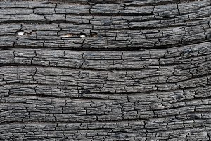 Surface of charred wood