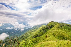 Landscape at Doi Pha Tang view point