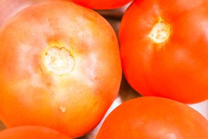 Tomatoes Closeup