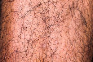 Male Hairy Leg Detail
