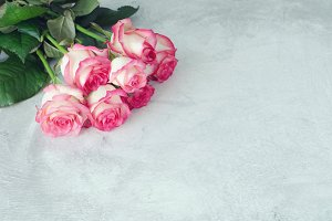 Pink roses on grey background