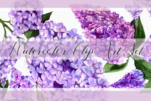Watercolor Lilac Flowers Clipart Set