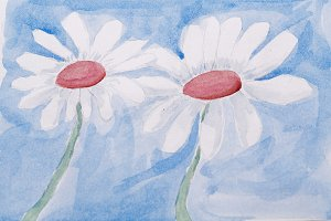 Chamomile with watercolor paint