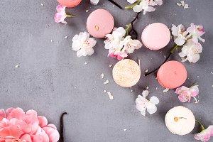 French pastel macarons