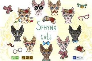 Sphynx Cats set