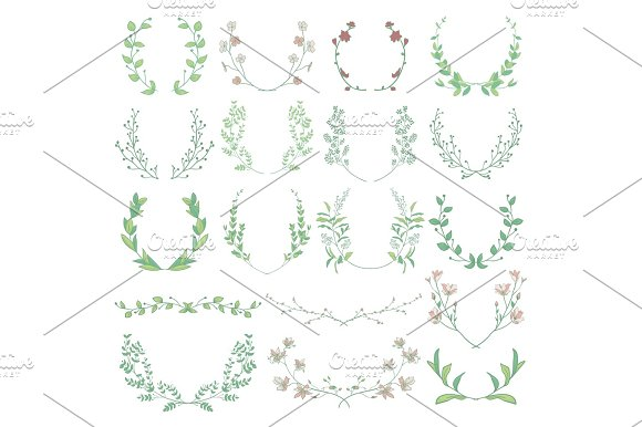Herbs Plants And Flowers Branches Laurels Brackets