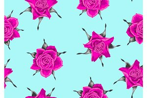 Seamless pattern with pink roses. Beautiful decorative flowers