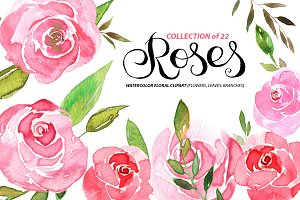 Watercolor pink roses and leaves