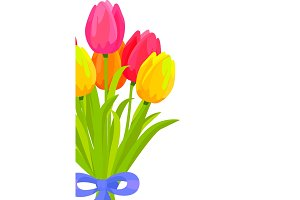 Bouquet of Colorful Tulips Bound with Blue Ribbon