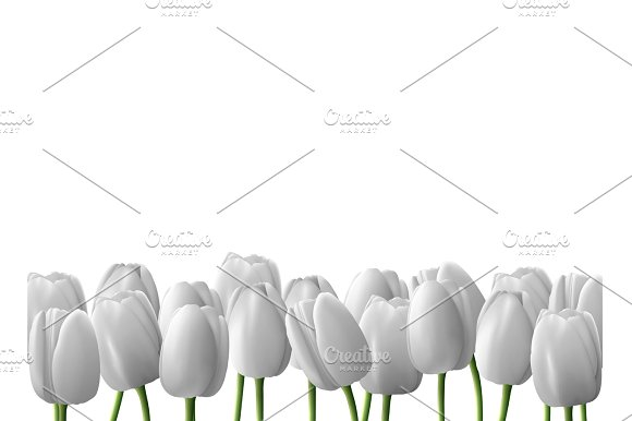 Flower Tulip Realistic Isolated On White Background