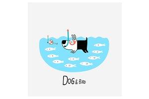 Dog & Bird snorkeling