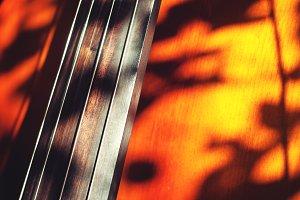 Bass Shadows