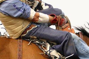 Rodeo Bareback Rider