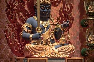 Blue Guardian Idol
