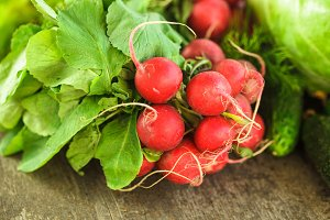 Fresh radish bunch