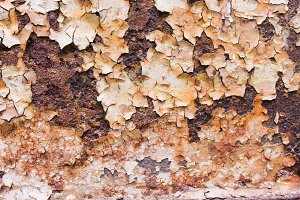 Rusted Metallic Surface
