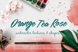 Orange Tea Rose Watercolor Textures
