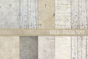 Birch Wood Background Paper