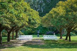 Romantic Outdoor Wedding Setup