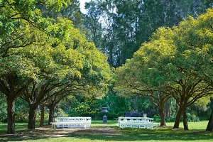 Outdoor Wedding Venue Setup