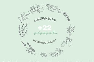 HAND DRAWN NATURAL HERB&LEAF VECTOR