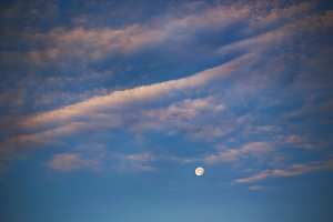 Evening moon on the blue sky