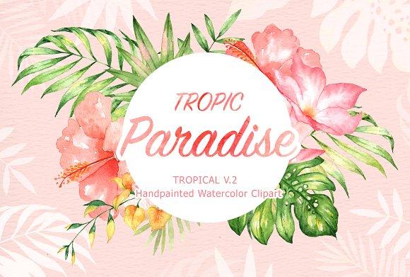 Tropic Paradise Watercolor Clipart