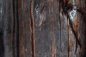 Old Wood,tree bark texture