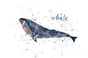 Whatercolor Whale