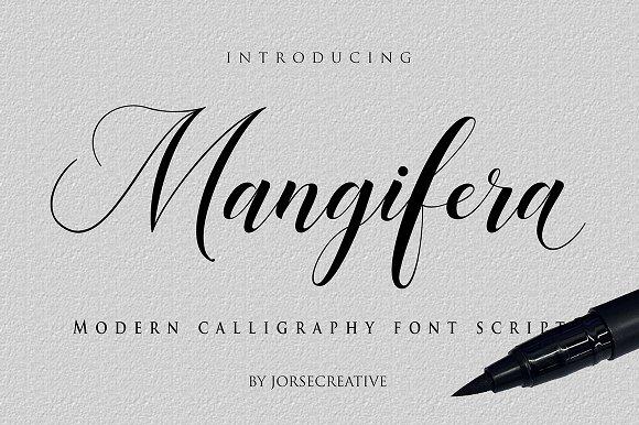 Mangifera Script Fonts Creative Market