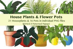 House Plants and Flower Pots + Bonus