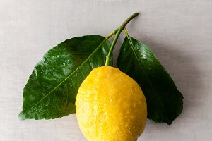 Fresh big natural lemon with leaves