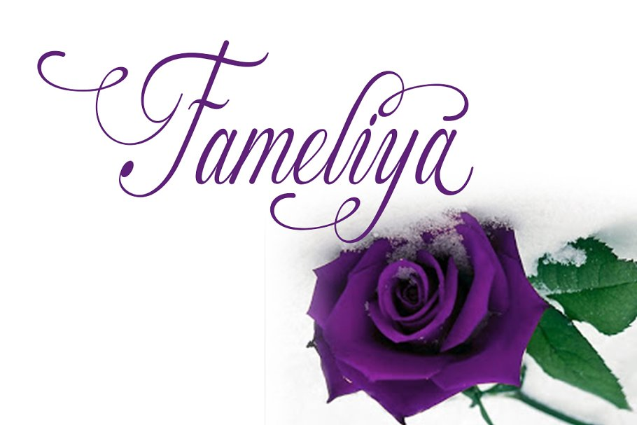 Fameliya in Script Fonts - product preview 8