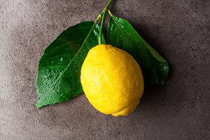 Fresh big natural lemon