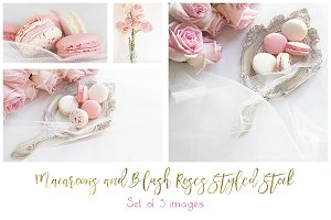Macaroons &Blush Roses Styled Stock