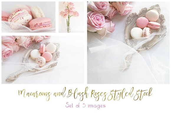Macaroons Blush Roses Styled Stock