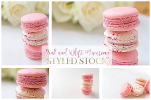 Pink and White Macaroons Bundle