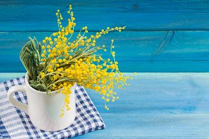 Yellow spring flowers of mimosa in a white mug on a blue wooden background.