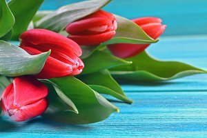 Happy mother's day. Tulips on a blue wooden background