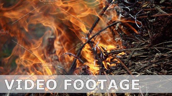 Closeup Of Beautiful Fire Slow Motion