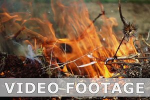 Closeup of beautiful fire slow motion